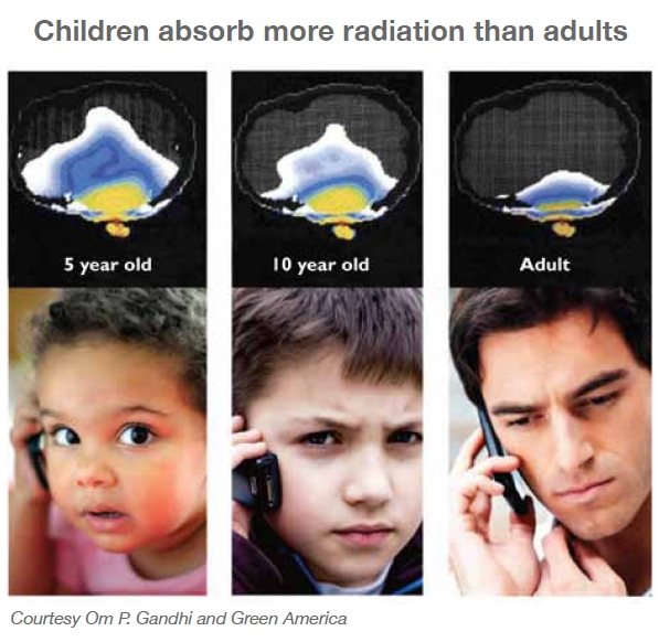 Children absorb more radiation than adults
